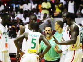 Afrobasket :Nigeria-Sénégal (76-71) - Les Lions tombent de haut