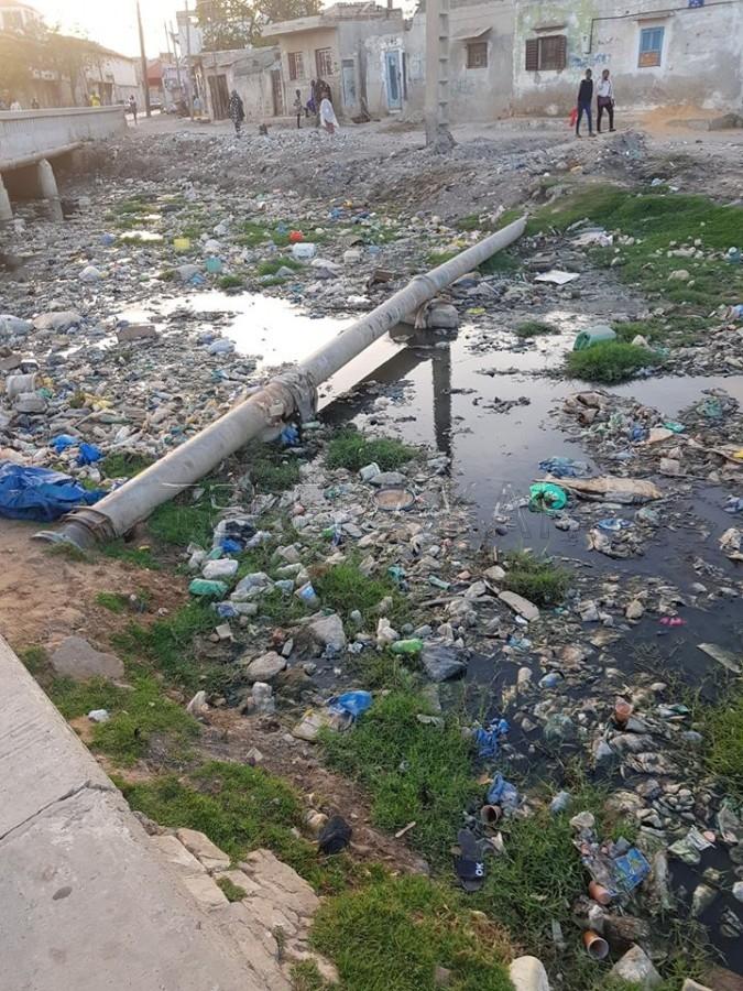 Contribution - Rufisque  : C'est pourquoi  certains quartiers l'eau de robinet avec une odeur d'eaux usées  %Post Title