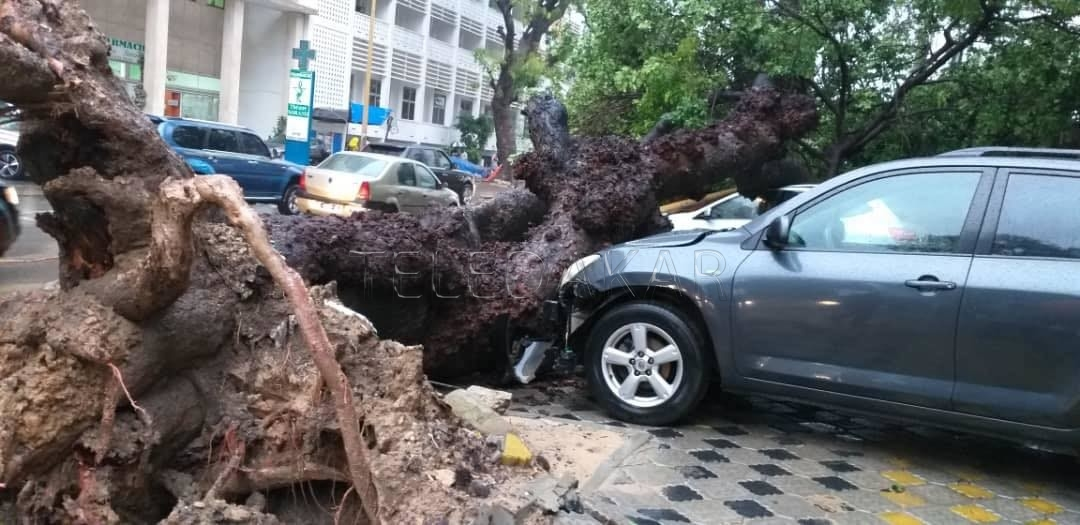 Photos - Dakar La pluie a fait des dégâts  %Post Title